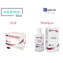 DermaBox Aminoter Cápsulas y Shampoo MAX